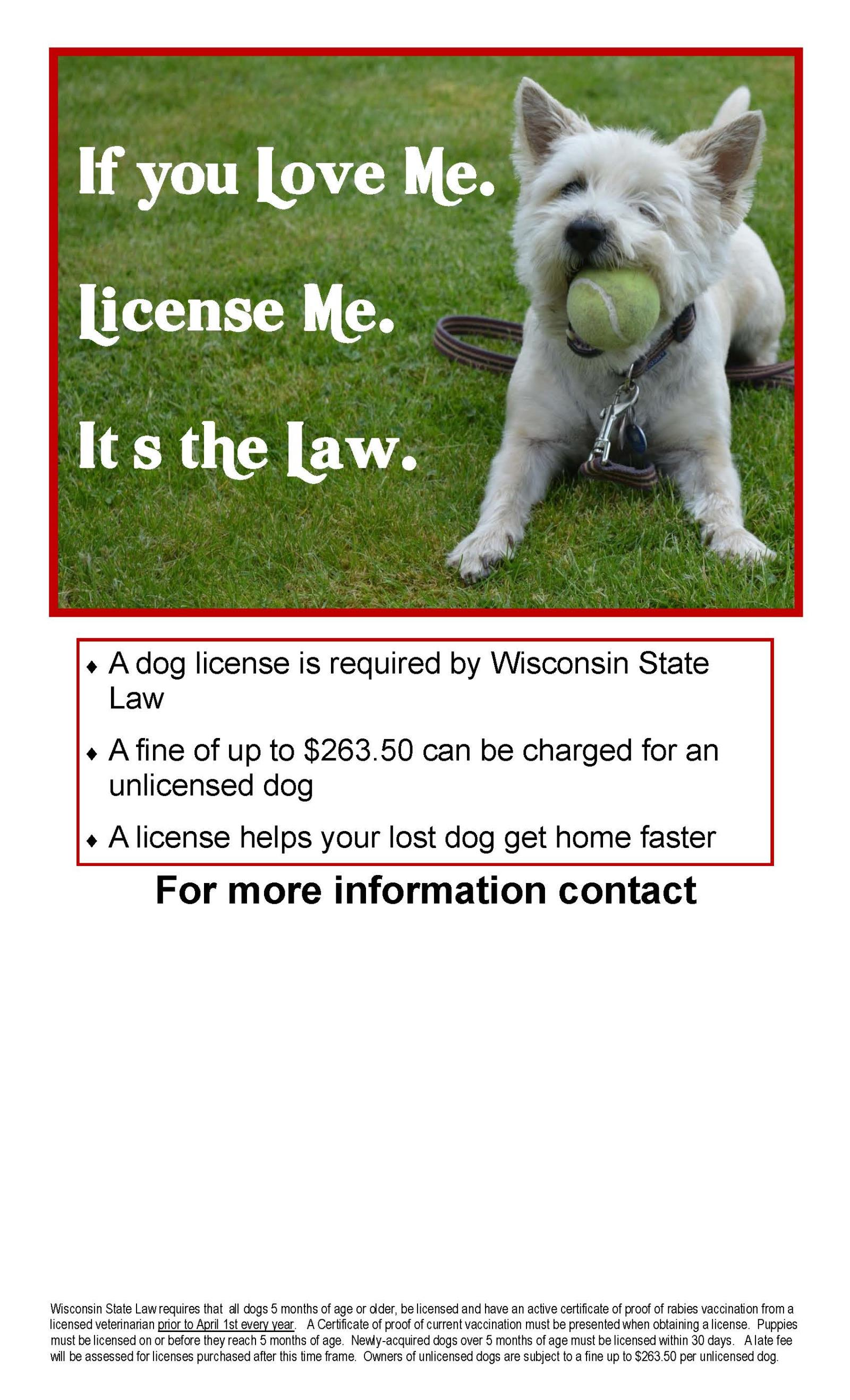 Dog License Posters 3