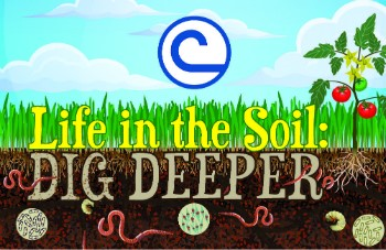 Lif in the Soil Dig Deeper Logo