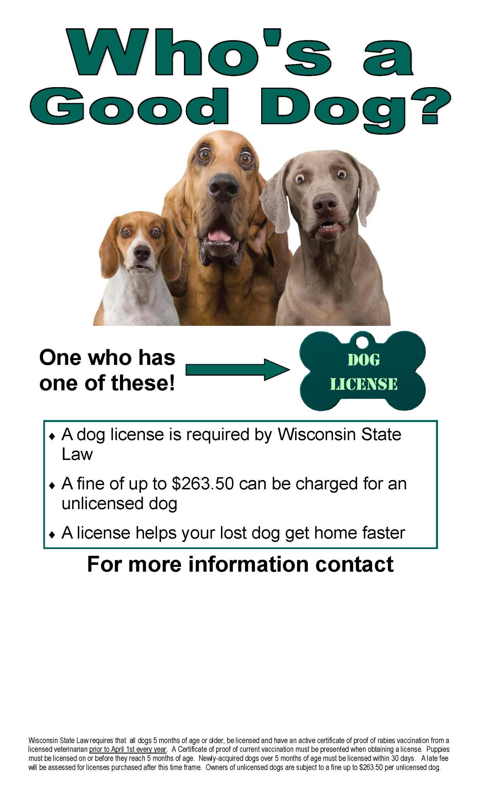 Dog License Posters 2